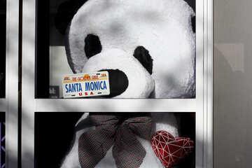 Toy Panda in einem Schaufenster №42081