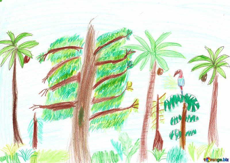 Desenhos Da Natureza Das Criancas Floresta Desenho Das Criancas