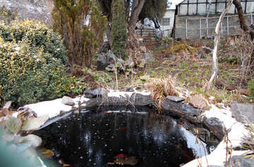 Artificial pond in winter №43106