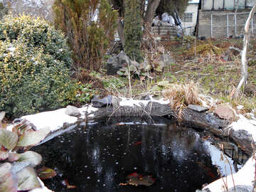Artificial pond in winter №43107