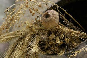 Autunno mazzo di spighe di grano e papaveri №43822