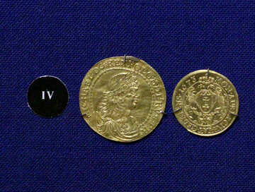Gold doubloon №43428