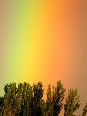 Große Regenbogen №43245
