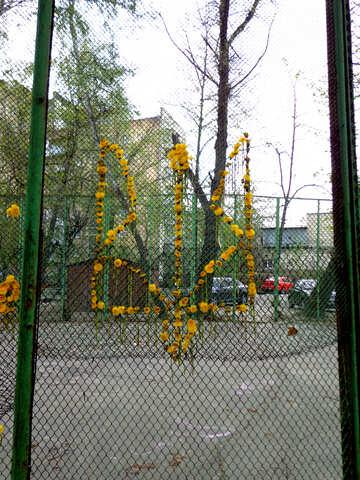 Emblem of Ukraine of flowers №43026