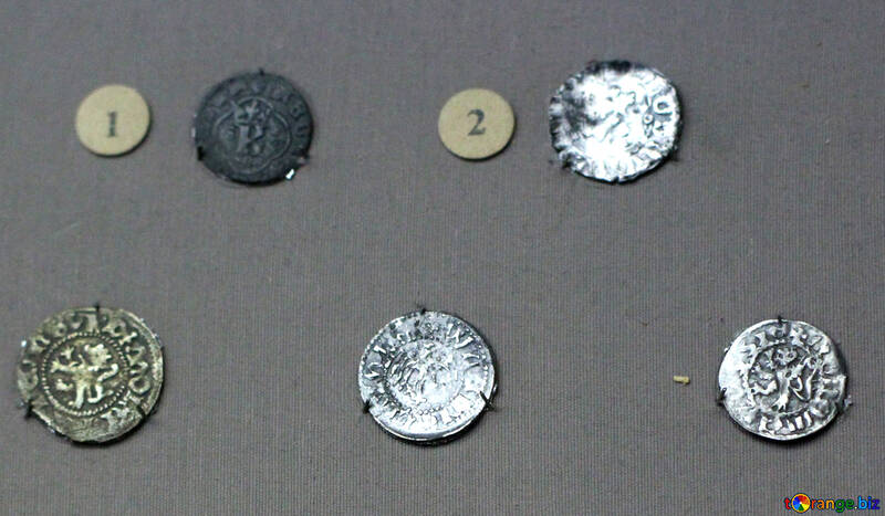 Coins Lithuanian principality 14th century №43596