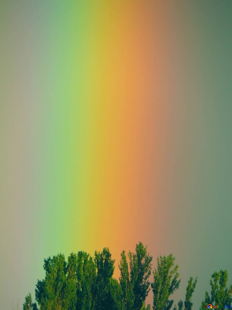 Rainbow Gradient №43246