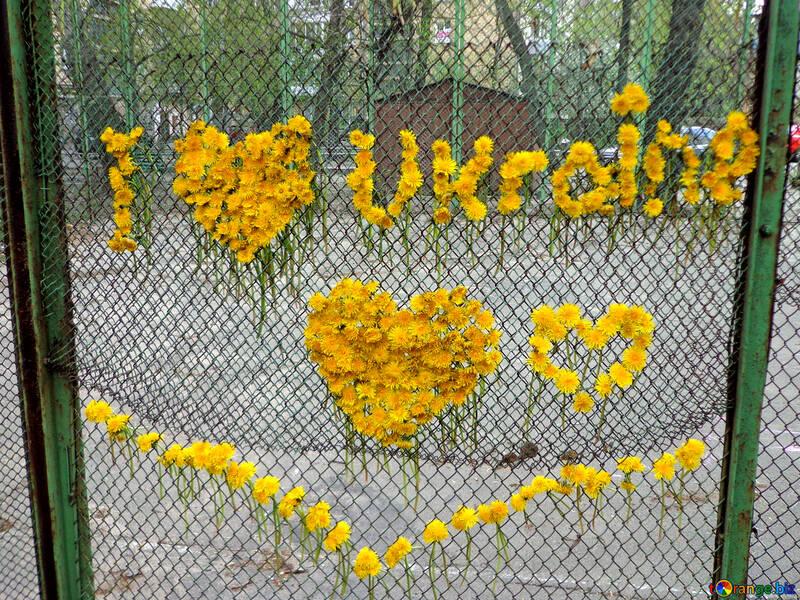 Me encanta Ucrania №43025