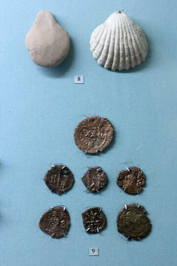 The coins of Chersonesos №44126
