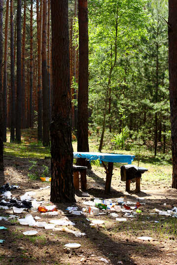 Rubbish in the forest №44820