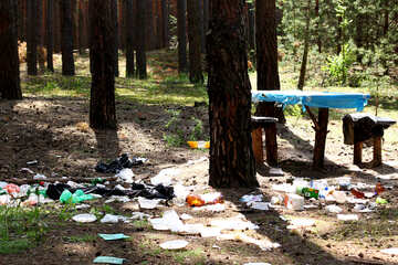 Rubbish in the forest №44821