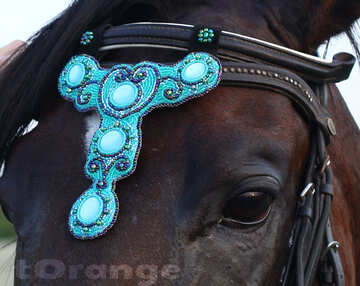 Handmade Beaded Headstall Browband Decorations Horse Jewelry. №44697