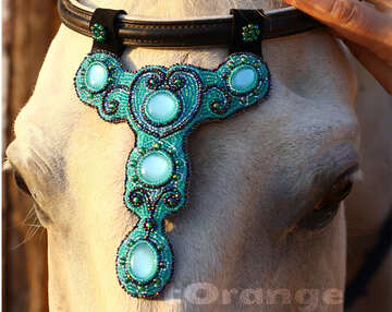 Handmade Browband Decoration Horse Jewelry Buy Free international shipping №44696