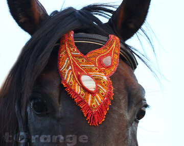 Handmade Red Browband Decoration with gemstone Agate and Carnelian Horse Jewelry Buy Free international shipping №44698