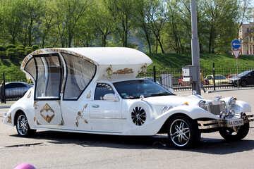 Retro Limousine Coach №44393
