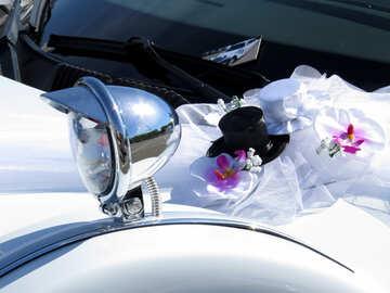 Wedding hats by car №44462
