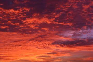 Puesta del sol colorida №44607