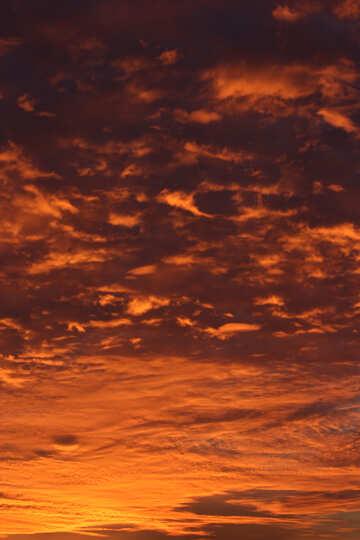 Puesta del sol roja №44615