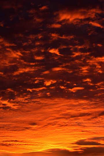 Puesta del sol roja №44622