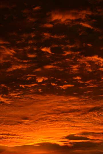 Puesta del sol roja №44623