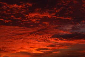 Puesta del sol roja №44624
