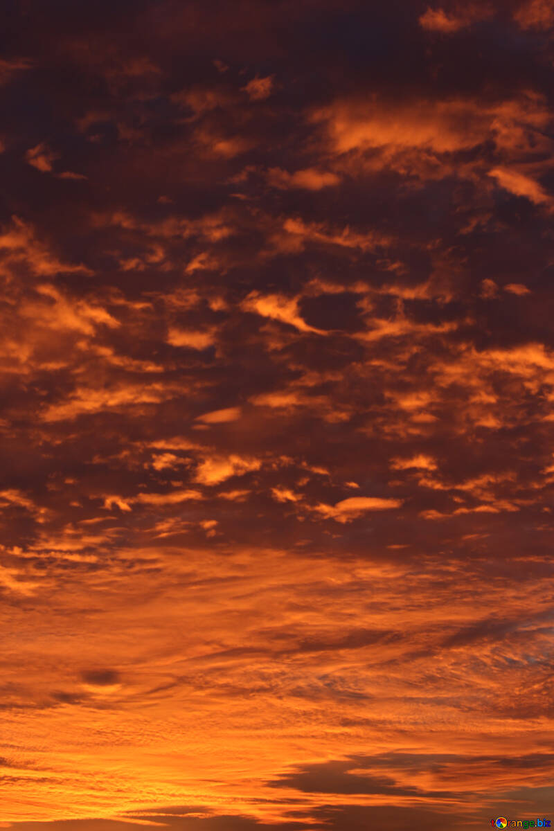 Красный закат №44615