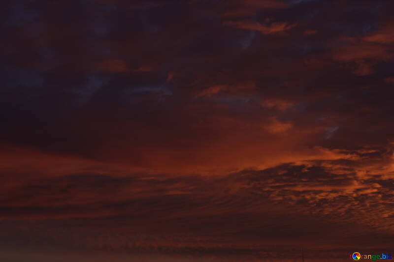 Red sunset №44627
