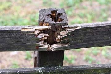 Broken fence №45948