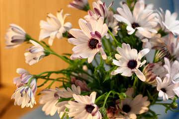 Beautiful autumn bouquet №46853