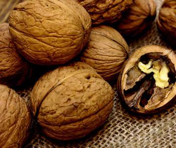 Walnuts №46222