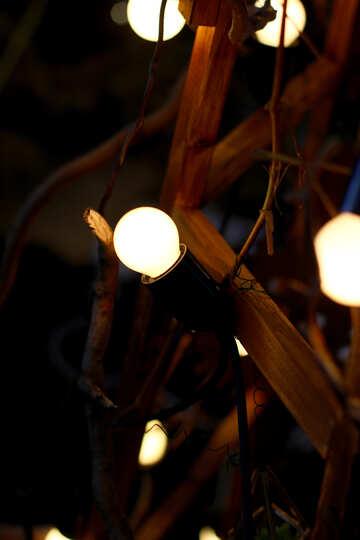 Light Decor №46944
