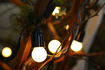 Garland of the old incandescent light bulbs №46921