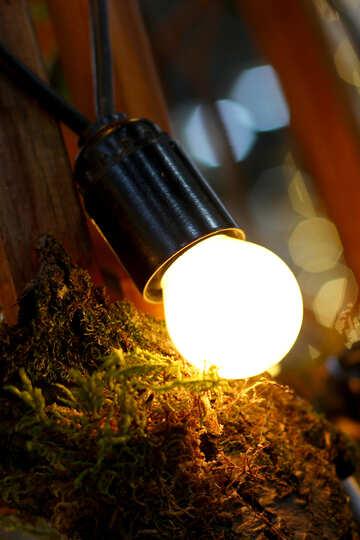 Vecchia lampada ad incandescenza №46925