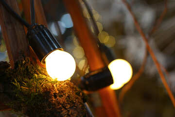 The old incandescent light bulbs in the decor №46924