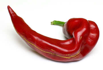 Twisted pod of red chili peppers