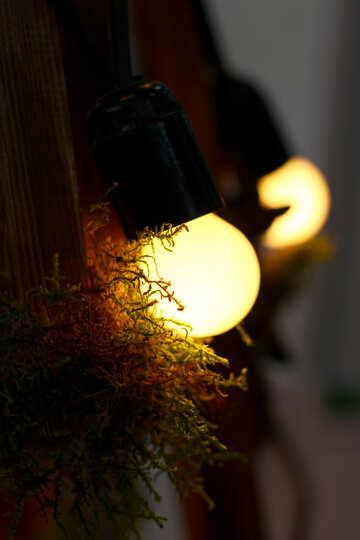 Vecchia lampada ad incandescenza №46953