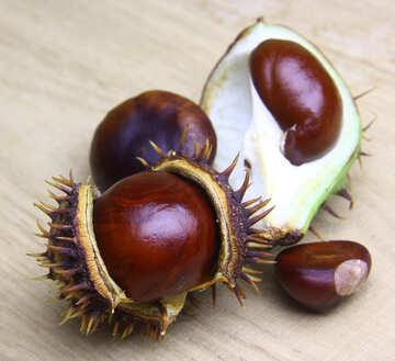 Horse chestnut on wooden background open fruit №46358
