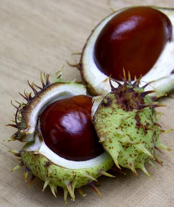 Horse chestnut on wooden background open fruit №46366