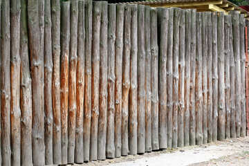 A fence made of tree trunks №46103
