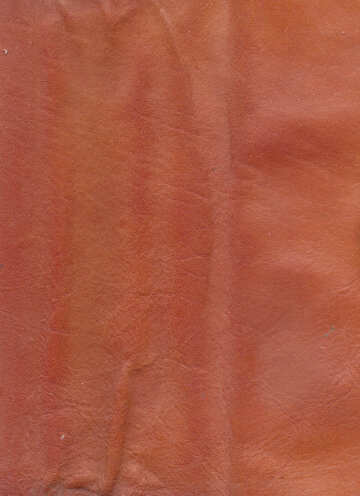Old leather texture №46552