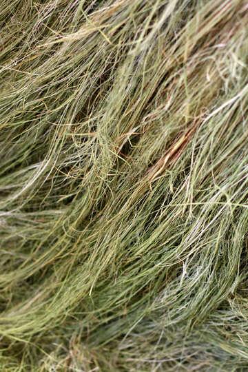 Texture vegetable fiber №46973