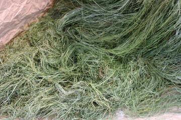 Texture vegetable fiber №46972