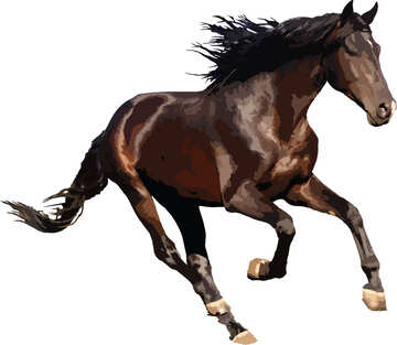 Horse runs vector isolated №46150