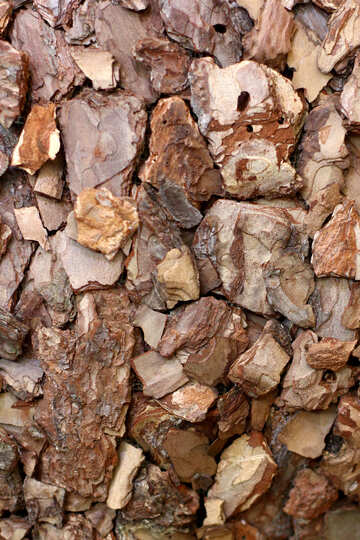 Mulch from the bark of a tree №46967
