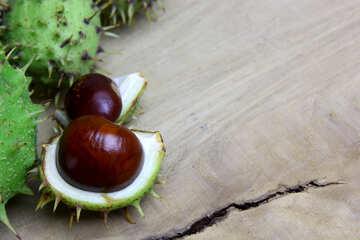Horse chestnut on wooden background open koyuchie fruits №46345