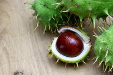 Horse chestnut on wooden background open koyuchie fruits №46348