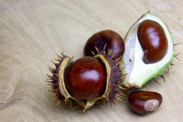 Horse chestnut on wooden background open koyuchie fruits №46356