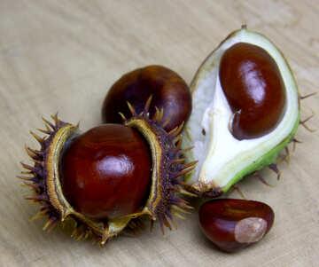 Horse chestnut on wooden background open fruit №46357
