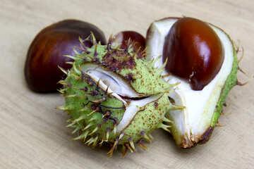Horse chestnut on wooden background open fruit №46359