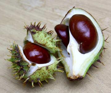 Horse chestnut on wooden background open fruit №46364