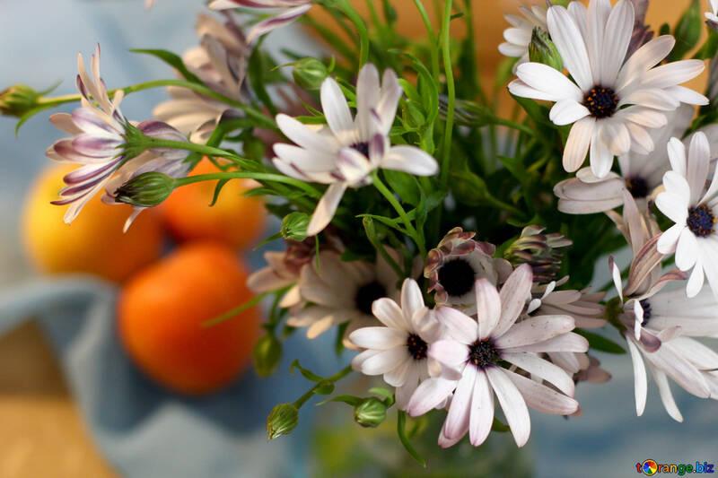 Naturaleza muerta con manzanas y flores №46851